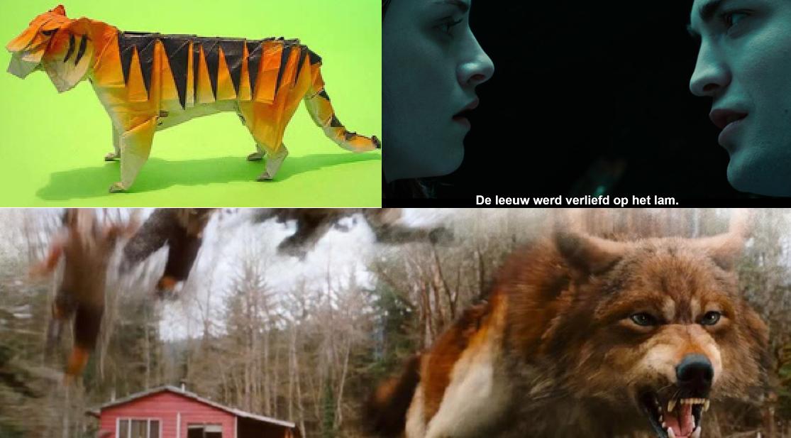 wolven, tijgers, leeuwen en lammetjes
