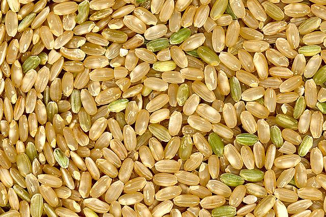 Over SSSSS, de uitknop en zakken rijst